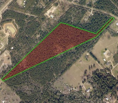 14872 County Line Rd Road, Willis, TX 77378 - #: 7245121