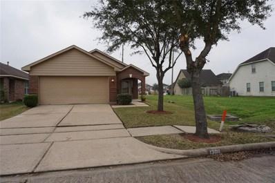 13011 Kingston Point Lane, Houston, TX 77047 - #: 72816872