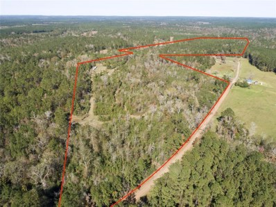 Tbd County Rd 2088, Burkeville, TX 75932 - #: 73139054