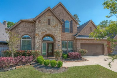 3539 Vasser Ridge Drive, Spring, TX 77388 - #: 73665165