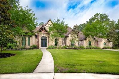 25331 Century Oaks Boulevard, Hockley, TX 77447 - #: 75195670