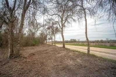 S Meyersville Road, Chappell Hill, TX 77426 - #: 75720041