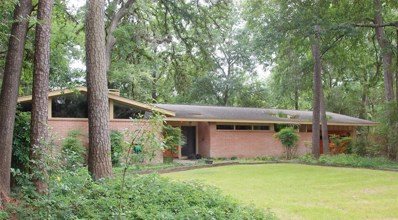 13131 Boheme Drive, Houston, TX 77079 - #: 75822625