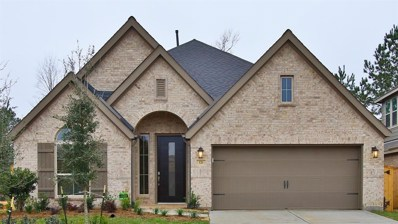 126 South Bearkat Court, Montgomery, TX 77316 - #: 75970206