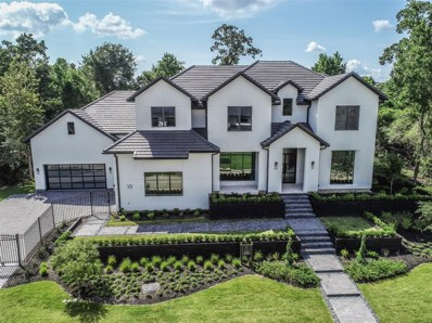 19 Primm Valley Court, The Woodlands, TX 77389 - #: 76700666