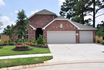 11119 English Holly Court, Tomball, TX 77375 - #: 77563094
