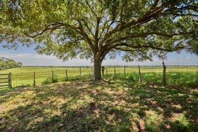 1955 Wiesepape Road, Brenham, TX 77833 - #: 77721394