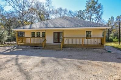 25763 Brushy Creek Drive, Hockley, TX 77447 - #: 78037798
