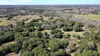 1240 S Weyand Rd Lot 10, Round Top, TX 78954 - #: 79334747