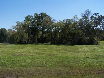 803 W Point Drive, Rosharon, TX 77583 - #: 80278697