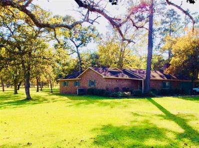 25389 Lady Ellen Drive, Hockley, TX 77447 - #: 81213461
