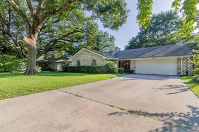 2003 Cedar Lane, Conroe, TX 77301 - #: 81218532