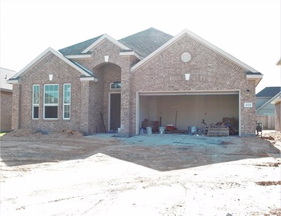 10328 Ritter Run Drive, Iowa Colony, TX 77583 - #: 82339874