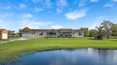 10015 County Road 168, Alvin, TX 77511 - #: 83593132