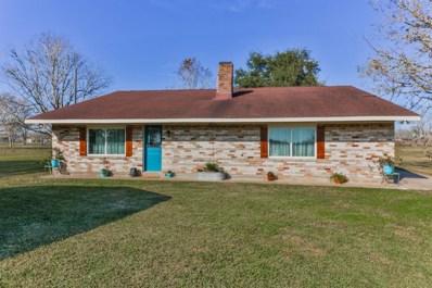 11003 County Road 168, Alvin, TX 77511 - #: 84373611