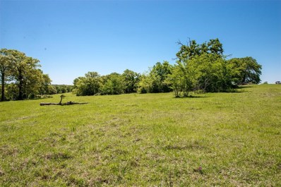 Tbd County Road 305, Rockdale, TX 76567 - #: 85236266