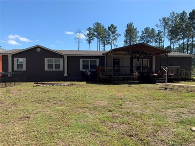 430 County Road 2153, Burkeville, TX 75932 - #: 85546555