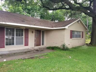 11714 Denise Drive, Houston, TX 77024 - #: 85745851
