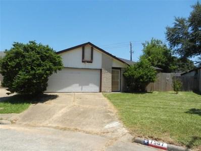 7507 Basil Lane, Houston, TX 77036 - #: 86245818