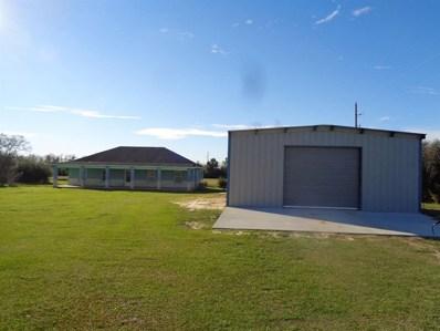 19613 Frey Road, Hempstead, TX 77445 - #: 87569665