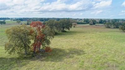 55 Acres Tbd Sloan Rd Road, Midway, TX 77852 - #: 87641438