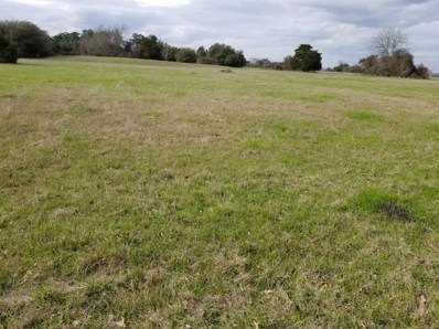 Andreas Road, Round Top, TX 78954 - #: 87849330