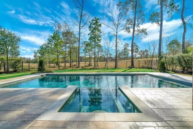 6 Chivary Oaks Court, The Woodlands, TX 77382 - #: 88175667