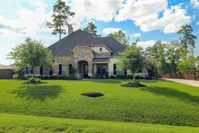 12603 Mostyn Lane, Magnolia, TX 77354 - #: 88591911