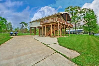 21722 Rio Villa Drive Drive S, Houston, TX 77049 - #: 89066150
