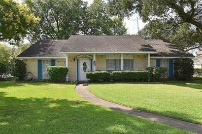 1401 Bracher Street, Houston, TX 77055 - #: 89984645