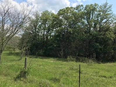 Hills Road, Carmine, TX 78932 - #: 90476255