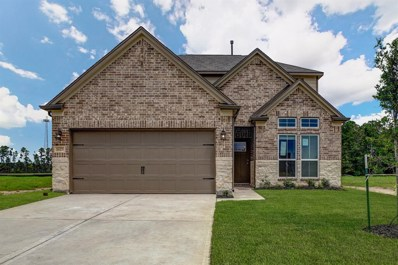 16325 Olive Sparrow Drive, Conroe, TX 77385 - #: 91579641