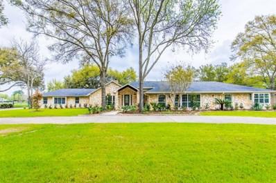 26606 Willow Lane, Katy, TX 77494 - #: 91947458