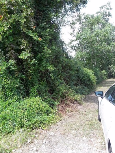 1895 County Road 344, Brazoria, TX 77422 - #: 92385399