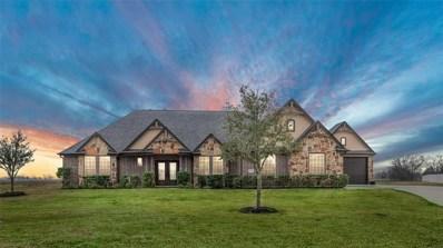 10819 Caddo Lake Drive, Needville, TX 77461 - #: 92873249