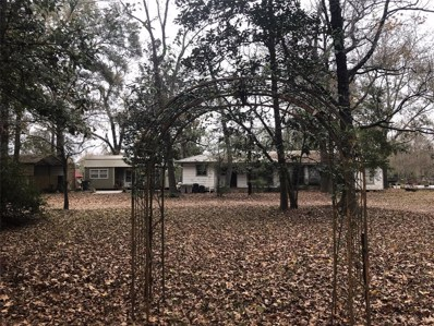 20587 McGager Drive, New Caney, TX 77357 - #: 93210699