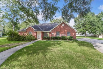 22030 Robin Road, Hockley, TX 77447 - #: 93212202