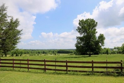 Tbd 10 Acres Riva Ranch Fm 149, Anderson, TX 77830 - #: 93435961