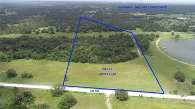 Tract 6 County Road 180, Anderson, TX 77830 - #: 94112264