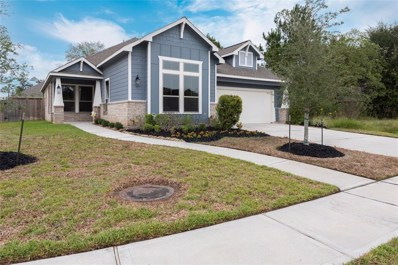 11114 English Holly Court, Tomball, TX 77375 - #: 94137111