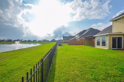 9334 Turnbull Lane, Rosenberg, TX 77469 - #: 94348509