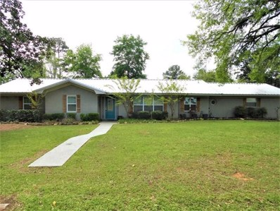 850 W Winter Street, Centerville, TX 75833 - #: 94749033