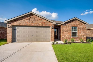 22618 Steel Blue Jaybird Drive, Hockley, TX 77447 - #: 95259661