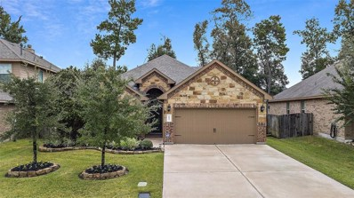 1051 Forest Haven Court, Conroe, TX 77384 - #: 96123115