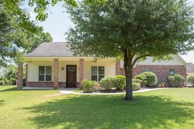 1300 Shepard Street, Brenham, TX 77833 - #: 96883014