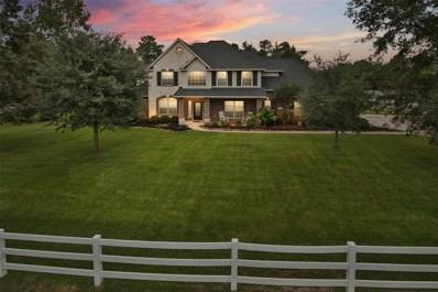 11802 Rainy Oaks Drive, Magnolia, TX 77354 - #: 97640915
