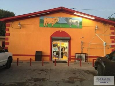 22271 S Us Highway 281, San Benito, TX 78586 - #: 29707317