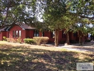 10277 Cr 3200, Raymondville, TX 78580 - #: 29712278