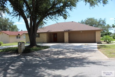 5217 Guava Dr, Palm Valley, TX 78552 - #: 29713219