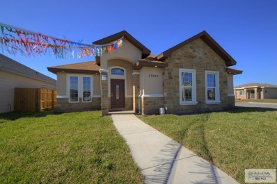 23322 Lime Ave., Harlingen, TX 78552 - #: 29713512